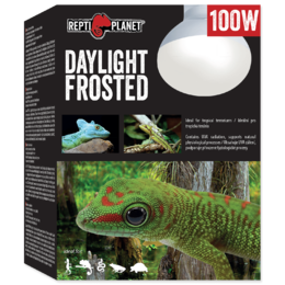 Repti Planet - Daylight Frosted 100W