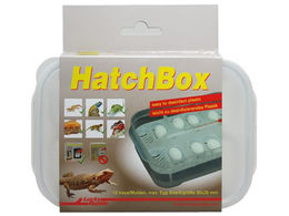 Lucky Reptile - HatchBox