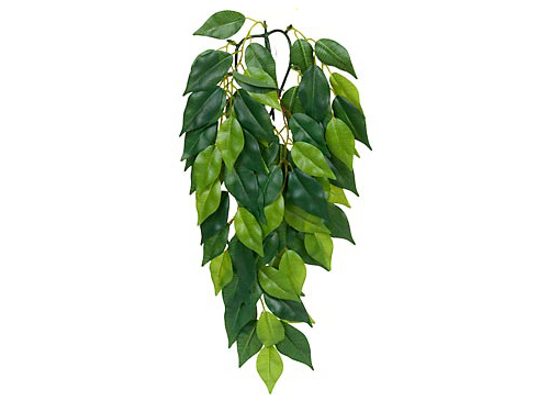 Exo Terra - Jungle Plant Ficus S