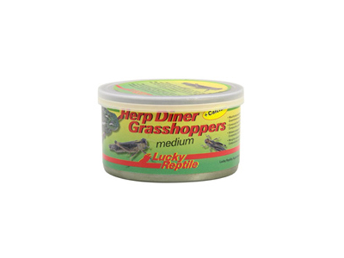Lucky Reptile - Herp Diner Grasshoppers medium 35g